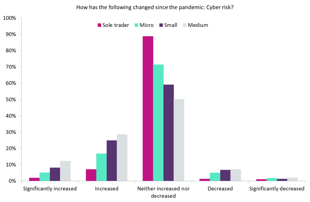 cyber risk pandemic