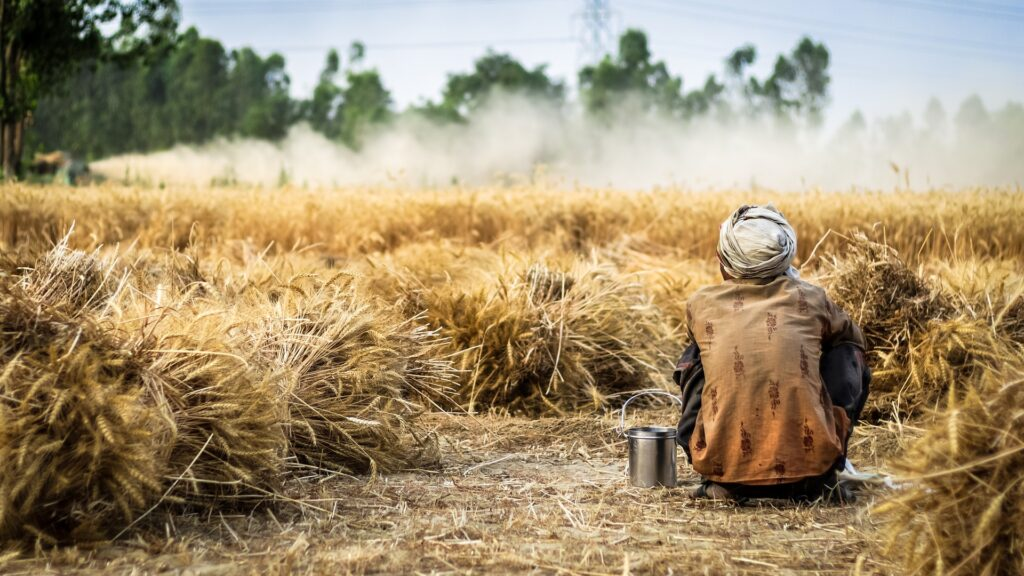 Wingsure unveils mobile insurance app for small farmers