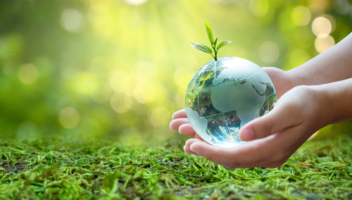 SMEs value sustainability – but not when it comes to choosing insurers